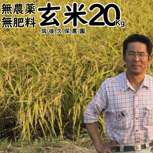 無農薬 無肥料 栽培米 20Kg 玄米福岡県産 夢つくし筑後久保農園無農薬 玄米自然栽培米