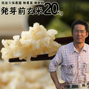 新米 令和2年産 無農薬 無肥料 発芽前玄米20Kg|福岡県産 元気つくし0.5分づき米筑後久保農園自然栽培米