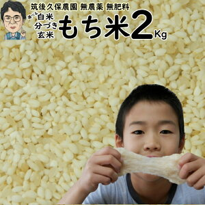 無農薬 無肥料栽培 もち米 2Kg|福岡県産ひよくもち筑後久保農園選べる 玄米 分づき 白米自然栽培米