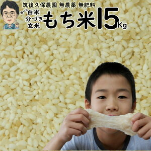 無農薬 無肥料栽培 もち米 15Kg|福岡県産ひよくもち筑後久保農園選べる 玄米 分づき 白米自然栽培米