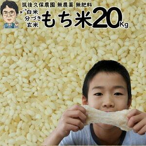 新米 令和2年産 無農薬 無肥料栽培 もち米 20Kg|福岡県産ひよくもち筑後久保農園選べる 玄米 分づき 白米自然栽培米