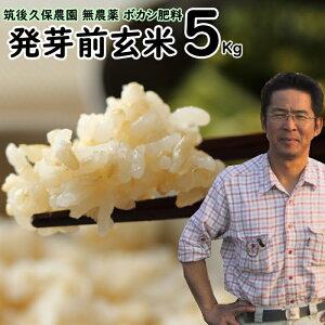 【キャッシュレスで5%還元】無農薬 ボカシ肥料 発芽前玄米 5Kg?福岡県産 ゆめつくし0.5分づき米筑後久保農園自然栽培米