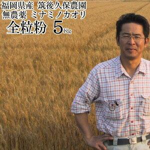 ミナミノカオリ 全粒粉 5Kg|パン用 小麦粉無農薬中 強力粉福岡県産筑後久保農園