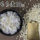 【キャッシュレスで5%還元】もち麦 10Kg|大麦 くすもち二条無農薬筑後久保農園福岡県産 国産【筑後久保農園出荷】