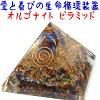 As long as (12 / 25 ) 5,980 yen today! 1/16 ships reservation sales orgonightpyra Mitt ★ macabuster ★