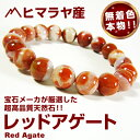 Rago80 hm red 12mm