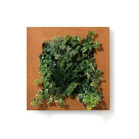 PIANTA×STANZA(ピアンタ・スタンツァ)マイギャラリー・Mサイズ500×500mmクリア(フェイクグリーン/人工植物・縦2段)