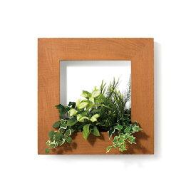 PIANTA×STANZA(ピアンタ・スタンツァ)マイギャラリー・Mサイズ500×500mmクリア(フェイクグリーン/人工植物)