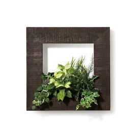 PIANTA×STANZA(ピアンタ・スタンツァ)マイギャラリー・Mサイズ500×500mmエボニー(フェイクグリーン/人工植物)