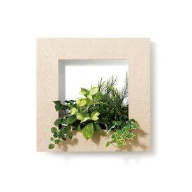 PIANTA×STANZA(ピアンタ・スタンツァ)マイギャラリー・Mサイズ500×500mmホワイトウッド(フェイクグリーン/人工植物)