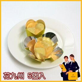 唐芋レアケーキZ花九州5個入