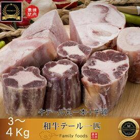 ◆冷凍◆ 和牛 テール 一匹「牛テール丸一本+牛骨」約3〜4kg / 牛骨 牛 テール 牛テール 国産 ゲンコツ 国産 和牛/コムタン用 チム用 /BBQ/バーベキュー