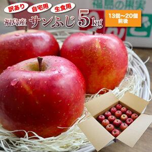 【送料無料】訳あり サンふじ りんご 約5kg (家庭用13玉〜20玉前後) 徳用 サイズおまかせ