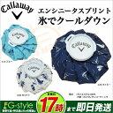 2017年モデル キャロウェイ ゴルフ Callaway 7186501 エンシニータスプリント氷嚢(ひょうのう/氷のう)アイスバッグ ランキングお取り寄せ