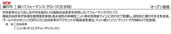 【メール便(ネコポス)送料無料】【日本正規品】2019年PUMAGOLFプーマゴルフ8677713Dパフォーマンスグローブ(メンズ)
