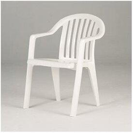 エバニュー EVERNEW イス 椅子 バーベキュー スポーツ アウトドア EHC372 マイアミアームチェアーEHC372 特殊送料:ランク【8C】【ENW】【QBJ38】