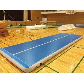 三和体育 SANWATAIKU マット エアマット 標準仕様 t10cm 120cm×300cm S-9582 特殊送料【ランク:お見積り】 【SWT】 【QCB43】
