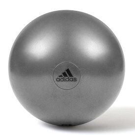 ADBL-11246GR adidas ジムボール グレー 65cm (PRB10690729) 【 アディダス 】【QCA04】