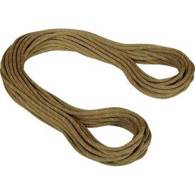 ロープ クライミング クライミングジムロープ 縄 登山 201004310A-01244-30M 9.9gym Workhorse Classic Rope 2010-04310 BOA 【MAT】