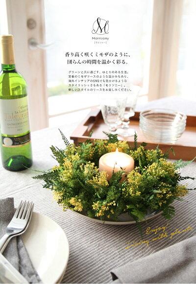 観葉植物/プリザーブドフラワー/インテリグリーン/開店祝い/新築祝い/お誕生日プレゼント/春リース