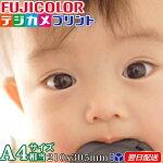 A4サイズ(305X210mm)