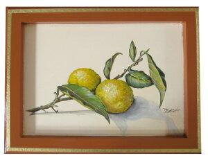 トールペイントご自分で描く図案付無塗装白木素材 cwk-200 柚子を描いたフレーム