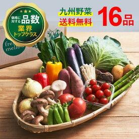【送料無料】暮らしを彩る旬のお野菜セット[全16品]大満足セット