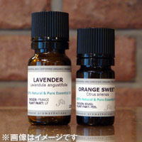 リツェアクベバ 12MLエッセンシャルオイル/精油/アロマオイル