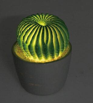 カクタスL.E.DライトA / DULTON CACTUS L.E.D. LIGHT TYPE-A/サボテン型ライト・間接照明・多肉植物・ボタニカル・LED・電池式・ダルトン【G755-916A】