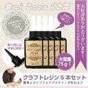 Craft_rejin_5set_500