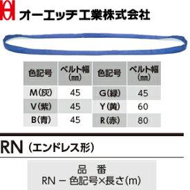 OH(オーエッチ工業) 吊具 ベルトスリング RN-B-5.0 アピックスRN(エンドレス形) 青 最大使用荷重:1,500kg 長さ:5.0m [受注生産品]