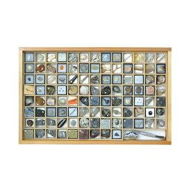アズワン 化石標本(化石標本100種) 1セット [3-654-06]