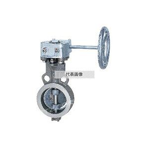 キッツ ステンレス鋼製UBシリーズ(GL-10UBM) GL-10UBM 300A[送料別途お見積り]