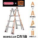 長谷川工業 アルタワン250シリーズ LG-10302 伸縮式脚立兼用はしご ALTA-ONE [個人宅配送不可]【在庫有り】