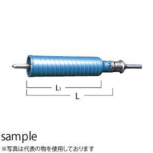 日立工機(HiKOKI) ハイパーダイヤコアビット組 No.0032-1439 φ75×160mm(コアビット+ガイドプレート+センタピン+ストレートシャンク)
