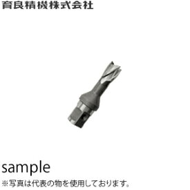 育良精機(イクラ) HCSQ145 25SQハイスカッター 穴径:φ14.5mm