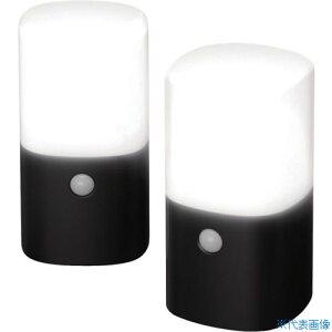 ■IRIS 乾電池式LEDガーデンセンサーライト 角型 セット ブラック(2個入) 〔品番:ZSL-MN1K-BKS2〕[TR-1341752][法人・事業所限定][外直送元]