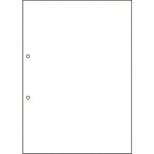 ■ヒサゴ FSC認証 マルチプリンタ帳票 A4 白紙 2穴 FSC2001Z(2146711)[法人・事業所限定][外直送元]
