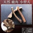 【マラソンP5倍】 犬 おやつ 無添加 鹿の角 ガム|どっぐふーどる 国産 約13cmから16cm 鹿角 鹿 角 歯石取り おもちゃ …