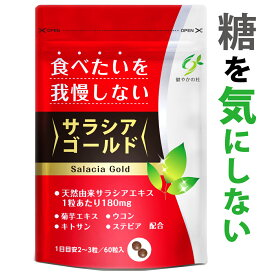 サラシア ウコン 菊芋 イヌリン サプリメント クルクミン キトサン デキストリン 食物繊維 サラシア 10800mg含有 ダイエット ダイエットサプリ サラシアゴールド サプリ 60粒 健やかの杜