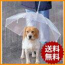 ペットアンブレラ 犬 傘 犬用 ペット アンブレラ ドッグアンブレラ 直径72cm 小型犬から中型犬まで 散歩 ペット用品 …