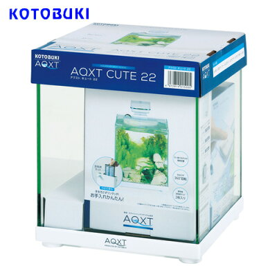 コトブキAQXTCUTE22(アクストキュート22)【水槽/熱帯魚/観賞魚/飼育】【生体】【通販/販売】【アクアリウム】