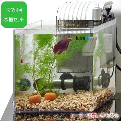 水槽熱帯魚グラステリアキューブ200H【送料無料】