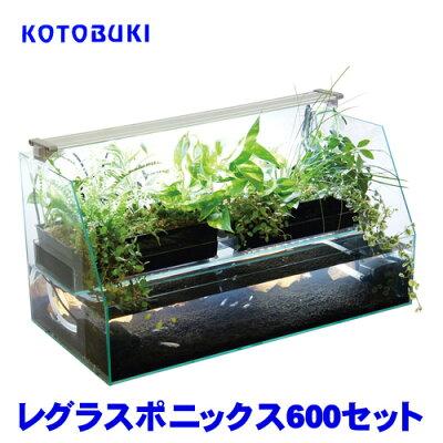 コトブキレグラスポニックス600セット【水槽セット】【飼育セット】