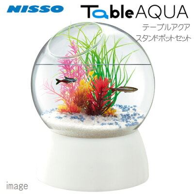 ニッソーテーブルアクアスタンドポットセットNWS-876【小型インテリア水槽ミニ水槽】【初心者セット】【飼育セット】【新着】