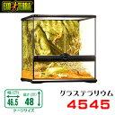 GEX グラステラリウム  4545 爬虫類 飼育 ケージ ガラスケージ 【水槽/熱帯魚/観賞魚/飼育】【生体】【通販/販売】【アクアリ…