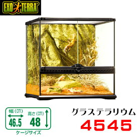 GEX グラステラリウム  4545 爬虫類 飼育 ケージ ガラスケージ 【水槽/熱帯魚/観賞魚/飼育】【生体】【通販/販売】【アクアリウム/あくありうむ】