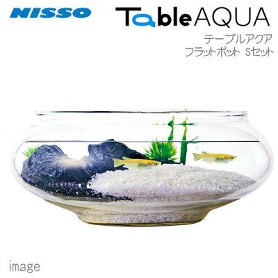 ニッソーテーブルアクアフラットポットSセットNWS-878【小型インテリア水槽ミニ水槽】【初心者セット】【飼育セット】【新着】