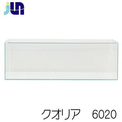 JUNクオリア6020(60×30×20cm)クリアガラスフレームレス【水槽/熱帯魚/観賞魚/飼育】【生体】【通販/販売】【アクアリウム】