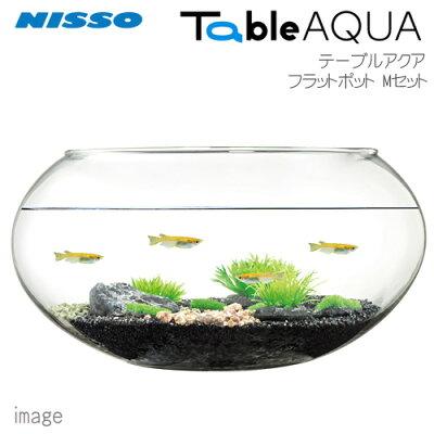 ニッソーテーブルアクアフラットポットMセットNWS-879【小型インテリア水槽ミニ水槽】【初心者セット】【飼育セット】【新着】